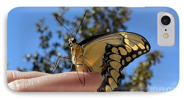 The Glorious Swallowtail  IPhone Case