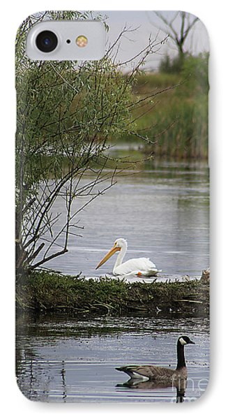 IPhone Case featuring the photograph The Goose And The Pelican by Alyce Taylor
