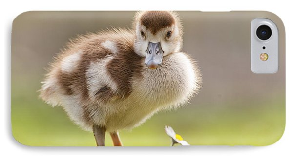 The Gosling And The Flower IPhone Case by Roeselien Raimond