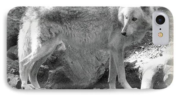 The Gray Wolf Phone Case by Debra     Vatalaro