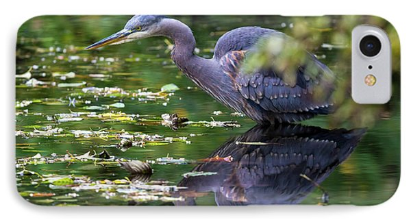 The Great Blue Heron Hunting For Food Phone Case by David Gn