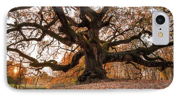 The Great Oak IPhone Case