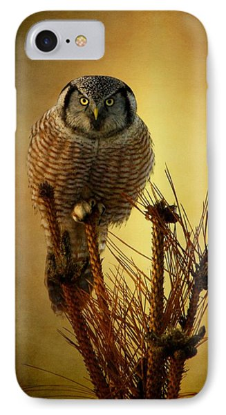 The Great Stare Down IPhone Case by Heather King