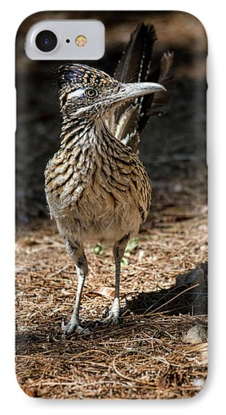 The Greater Roadrunner Walk  IPhone 7 Case