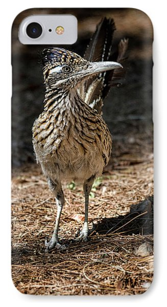 The Greater Roadrunner Walk  IPhone 7 Case by Saija Lehtonen
