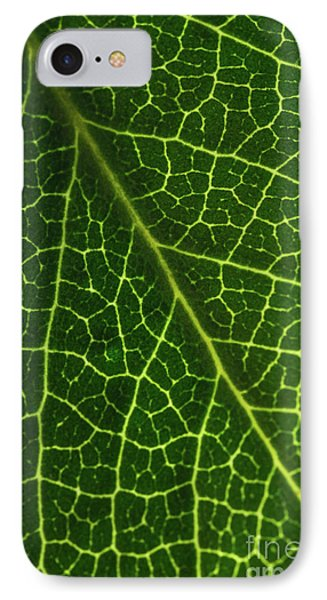 IPhone Case featuring the photograph The Green Network by Ana V Ramirez
