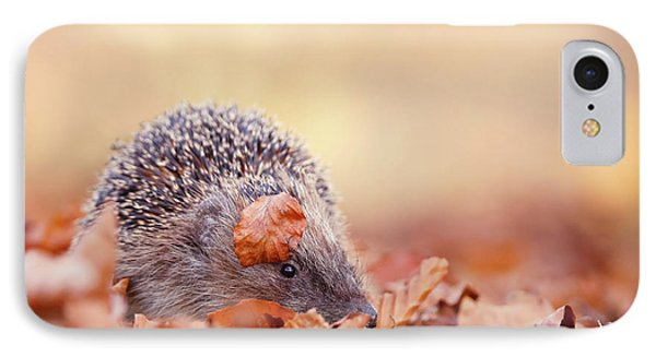The Happy Hedgehog II IPhone Case by Roeselien Raimond