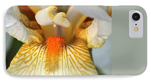 IPhone Case featuring the photograph The Heart Of A Bearded Iris by Sheila Brown