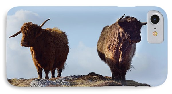 The Highland Cows IPhone Case by Nichola Denny