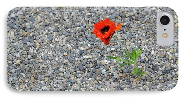 The Hopeful Poppy IPhone Case by Michael Bessler