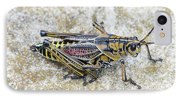 The Hopper Grasshopper Art IPhone 7 Case by Reid Callaway