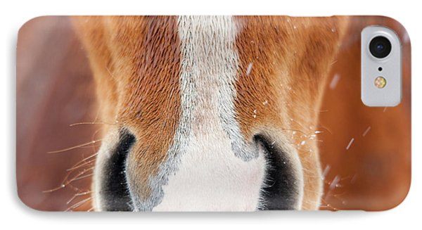 The Horse Collection #2 IPhone Case by Tom Cuccio