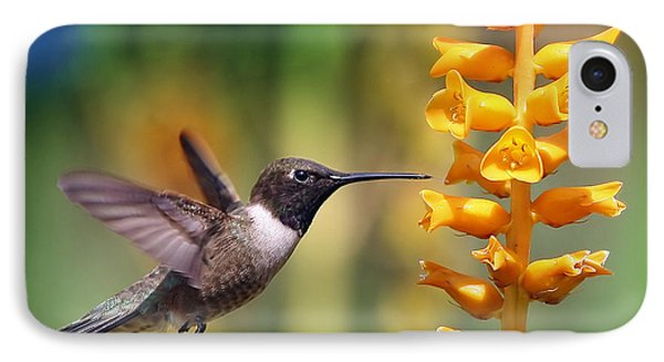 IPhone Case featuring the photograph The Hummingbird And The Bee by William Lee