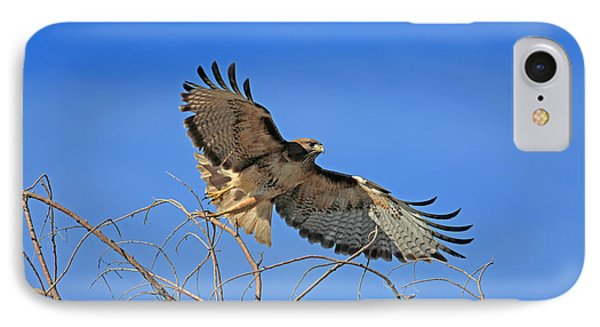 The Hunt IPhone Case by Donna Kennedy