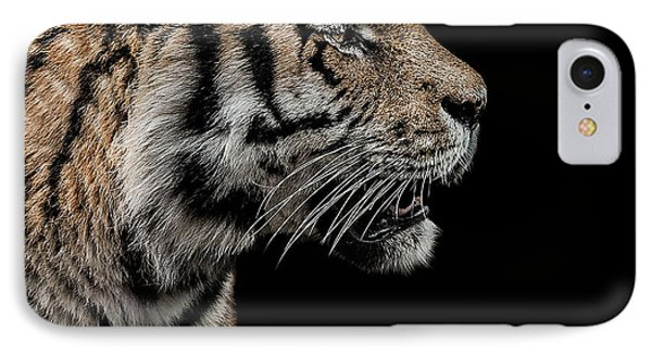 The Hunter IPhone Case by Paul Neville