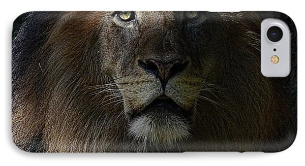 The King In Awe IPhone Case by Ronda Ryan