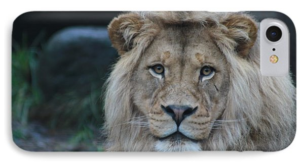 IPhone Case featuring the photograph The King by Laddie Halupa