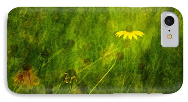 The Last Black-eyed Susan IPhone Case by  Onyonet  Photo Studios