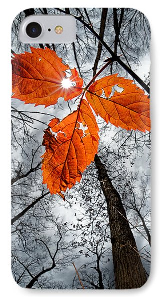 The Last Leaf Of November IPhone Case by Robert Charity