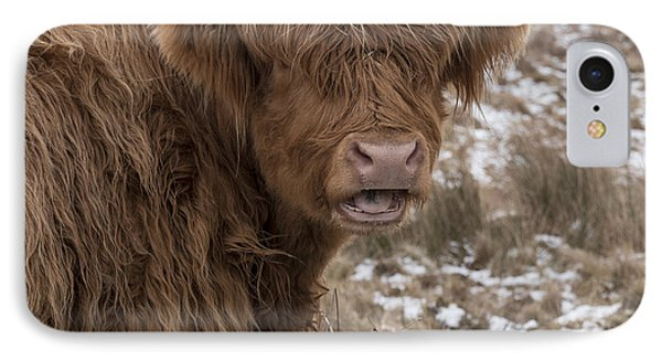 The Laughing Cow, Scottish Version IPhone Case