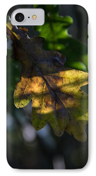 IPhone Case featuring the photograph The Light Fell Softly by Odd Jeppesen