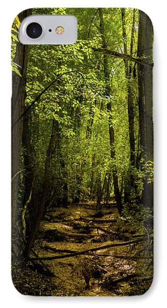 The Light In The Forest IPhone Case by TL Mair