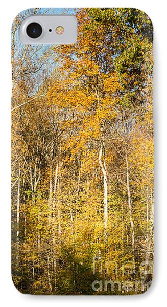 The Long And Winding Road - Natchez Trace IPhone Case