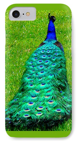 IPhone Case featuring the photograph The Majestic Tail by Angela Annas