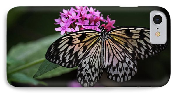 The Master Calls A Butterfly IPhone Case