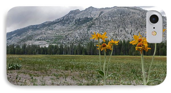 The Meadow IPhone Case by Paul Foutz