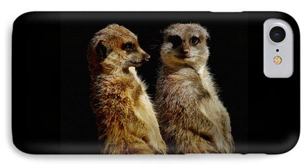 The Meerkats IPhone Case by Ernie Echols