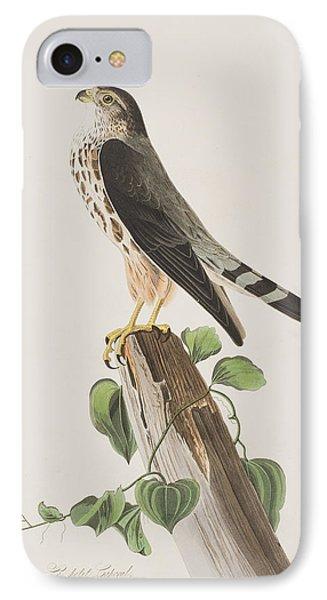 The Merlin IPhone Case by John James Audubon