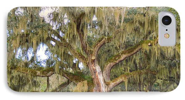 The Mighty Oak IPhone Case by Linda Covino