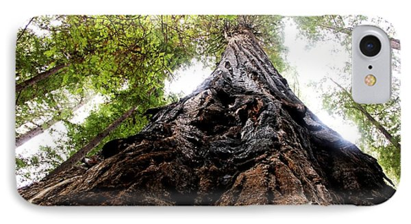 The Mighty Redwood IPhone Case