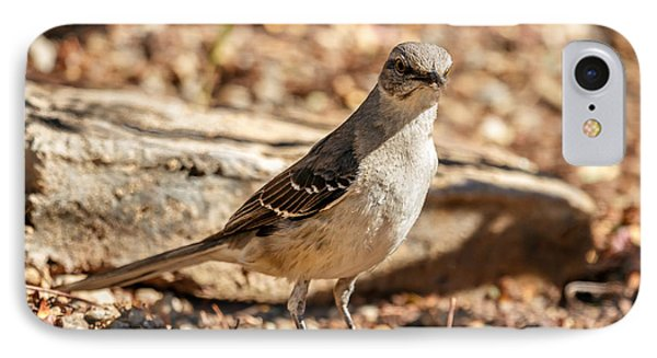 The Mockingbird IPhone Case by Robert Bales