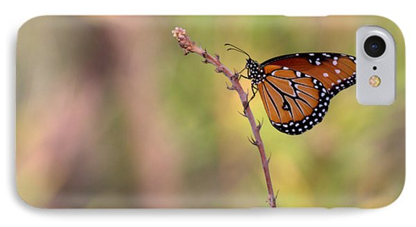 The Monarch Poses IPhone Case by Ruth Jolly