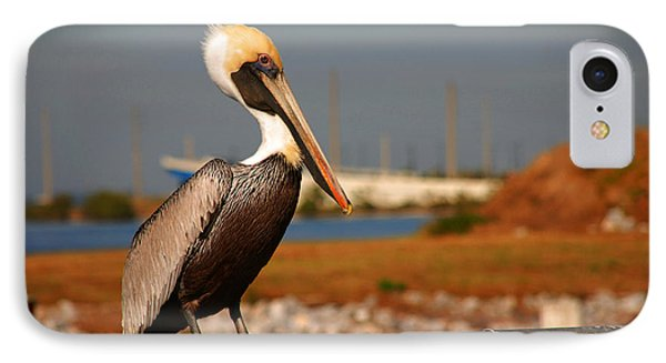 The Most Beautiful Pelican Phone Case by Susanne Van Hulst