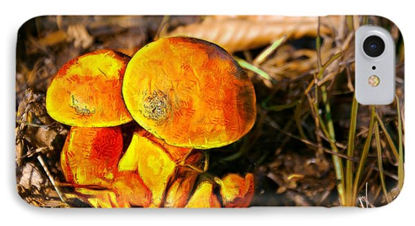 The Mushroom - Painting Over Photo - Pa IPhone Case