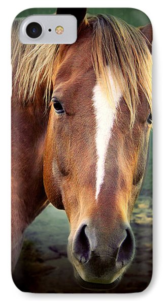 The New Horse  IPhone Case by Mark Ashkenazi