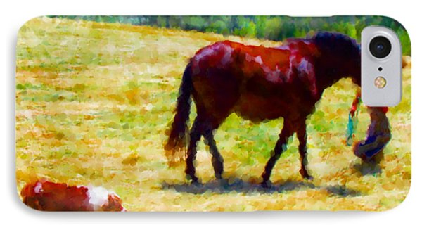 The New Mare And The Perfect Summer Day IPhone Case by Anastasia Savage Ealy
