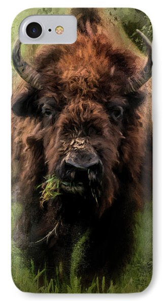 The Nibbler Bison Art By Jai Johnson IPhone Case
