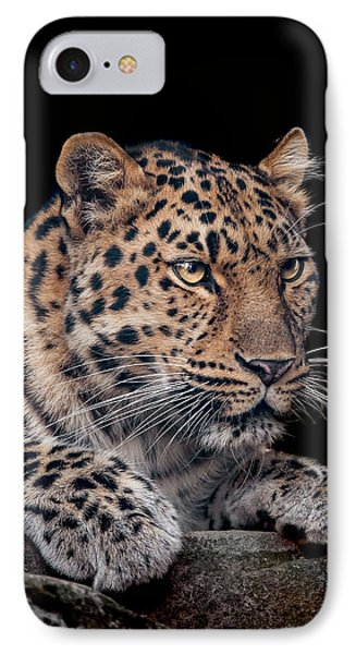 The Night Watchman IPhone Case by Paul Neville
