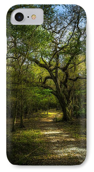 The Oak Trail IPhone Case by Marvin Spates