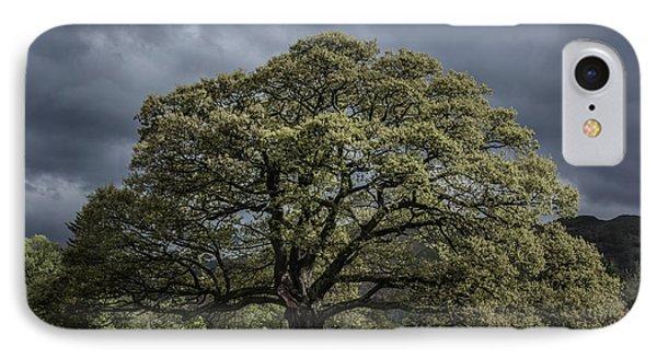 The Old Oak Of Glenridding V2.0 IPhone Case