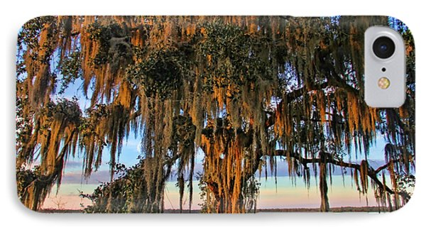 The Old Oak Tree IPhone Case by HH Photography of Florida