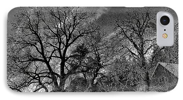 The Old Oak Tree IPhone Case