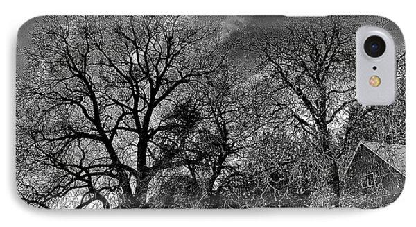 The Old Oak Tree IPhone Case by Steve Warnstaff