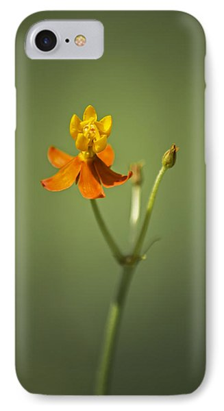 The One - Asclepias Curassavica - Butterfly Milkweed IPhone 7 Case by Johan Hakansson