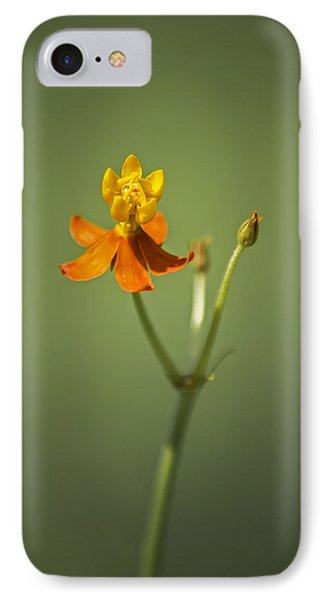 The One - Asclepias Curassavica - Butterfly Milkweed IPhone Case