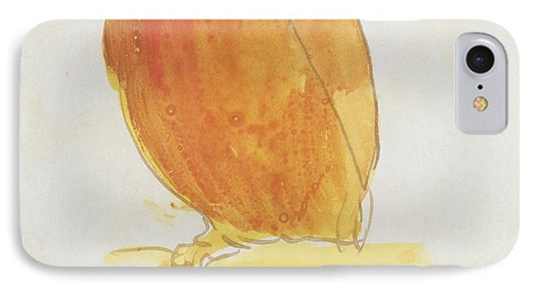 The Orange Color Bird IPhone Case by Edward Lear